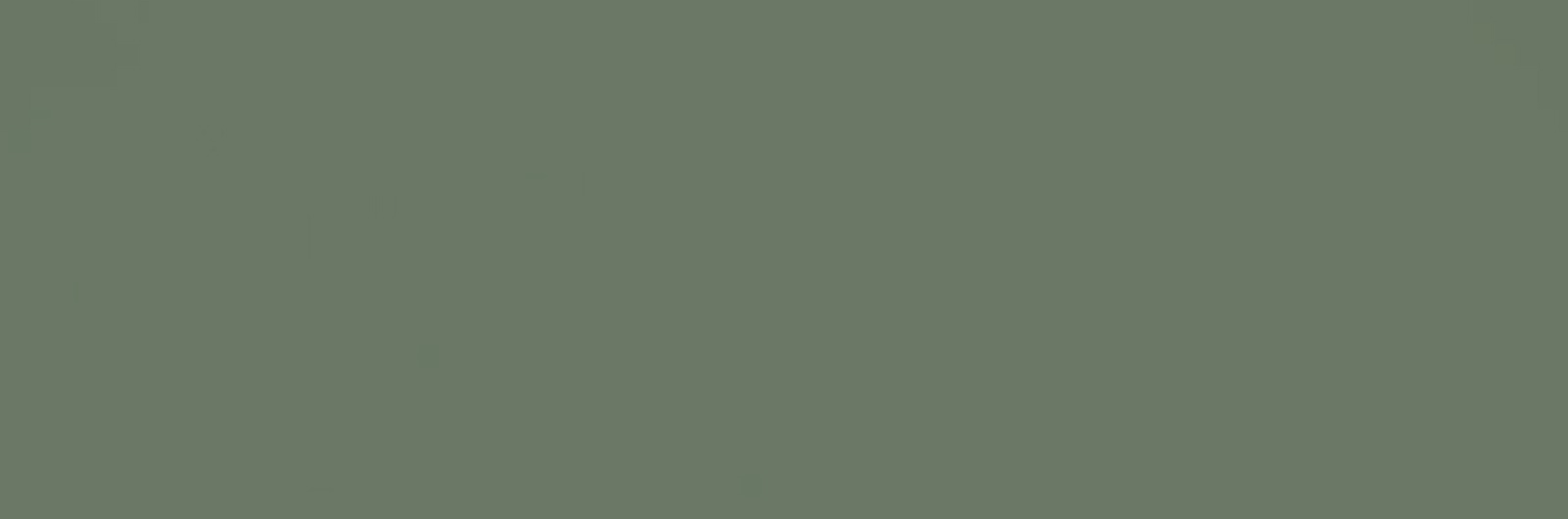 slider-city-roots-unicolor-modest-green